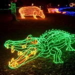 Zoo News is Good News: Zoo set to illuminate holidays at Annual ZooLights!
